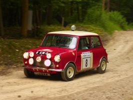 Goodwood 2012: Mini Cooper S Rally Car by randomlurker
