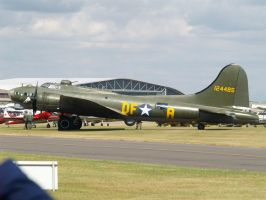 Sally B by hanimal60