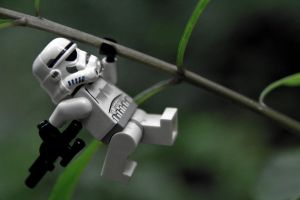 Tree-climbing Stormtrooper by WillyWonkaTheFearful