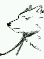 Yet another Wolf. :3 by Jesse-The-Ookami