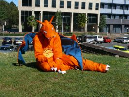 Charizard Cosplay. by bluewolf93