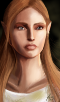 The Grey Warden by DrianaFeowell