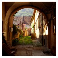 Backyard in Brasov by SzandorDuBois