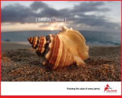knowing the value-Security by capmunir