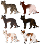 Cat Adoptables | Name Your Price | by jupiter-hollow