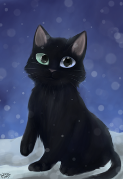 Kitty Cat by Copyplier