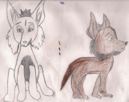 Wolves by thelcru