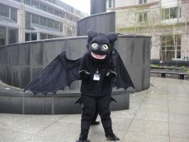Toothless by the Fountain AB11 by PokemonMasta