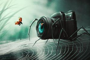 Spider-Cam by lenyca