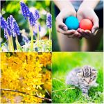 happy easter, enjoy springtime by patrycjanna