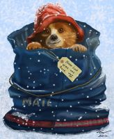 Paddington Bear by niveky