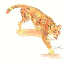 Ocelot Watercolor Illustration by Jadine