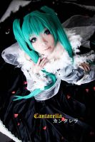 VOCALOID - Cantarella: Miku 1 by Section8SG
