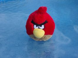 Angry Bird Toy by UNDEADWARRIOR7411