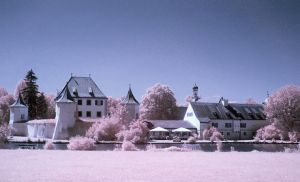 Infrared view by mutrus