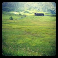 The Alps - Greenery by siby