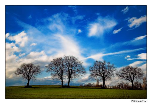 Planet earth by photography-key