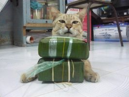 My cat is selling stick-rice-cake. by chillydragon