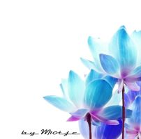 Blue Lotus by M10tje