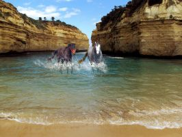 Horses Playing In The Sea By Kitszl17 by Manipulate-It