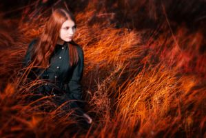 In autumn fire edit by LoginOFF