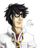 James Potter by blindbandit5