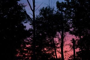 Red Sky At Night by silverspoken2005