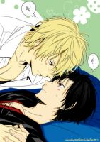 Shizaya [Le Colored] by MuffinMxX