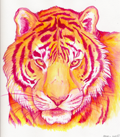 Color Tiger by Minionwolf711