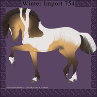 Nordanner Winter Import 754 by DemiWolfe