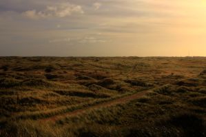 Ameland beach by Acidmittens