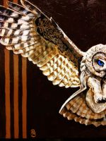 Owl #4 by pmbagoly