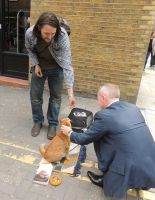 Street Cat Named Bob by CanveySue