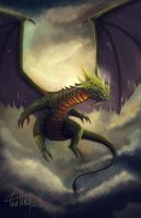 Dragon by TWPictures