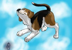 Beagle!! by SearraLee
