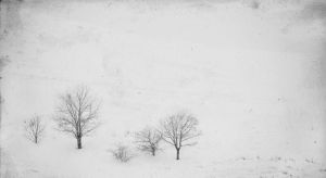 Olden winter by Avalong