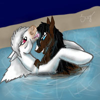 love in the lake by lipazzaner