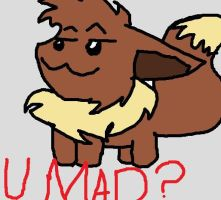 Message From Eevee: U MAD? by ZoruaAWESOME