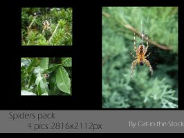 Spider pack by Cat-in-the-Stock