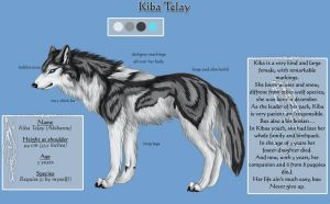 Kiba Telay - charactersheet by Khalliys