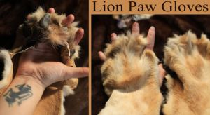 African Lion Paw Gloves for Sale by NaturePunk