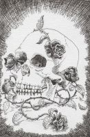A skull and roses by mad-sacrifice
