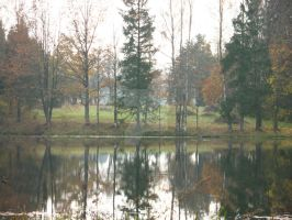 Reflection by ydwoR