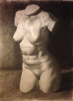 Plaster torso by NoWayMe2