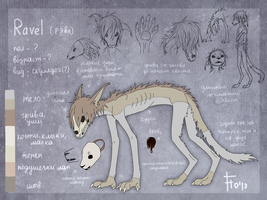 Ravel ref by flowerewolf