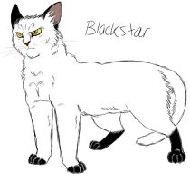 Blackstar by Graystripe64