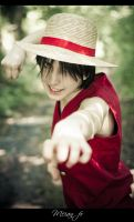 Monkey D. Luffy by Lye1