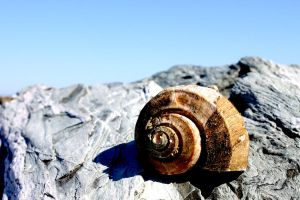 Spiral on the Rocks by patganz