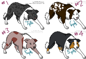 Border Collie Adopts- All Gone by StubbornLove