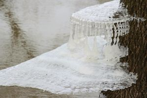 Ice sculpture 5 by Tenrecresearch